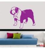 Sticker caine bulldog englez WCC015