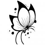 Sticker fluture WLAN12