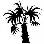 Autocolant palmier WLC127