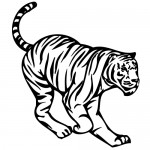 Sticker tigru WLAN29