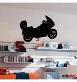 Sticker motocicleta WCSP15