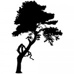Sticker decorativ copac WLC110