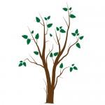 Sticker copac cu frunze WLC202