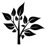 Stickere copac WLC207