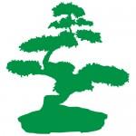 Sticker bonsai WLC217