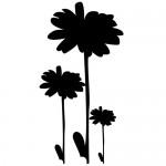 Stickere pereti flori WLF228